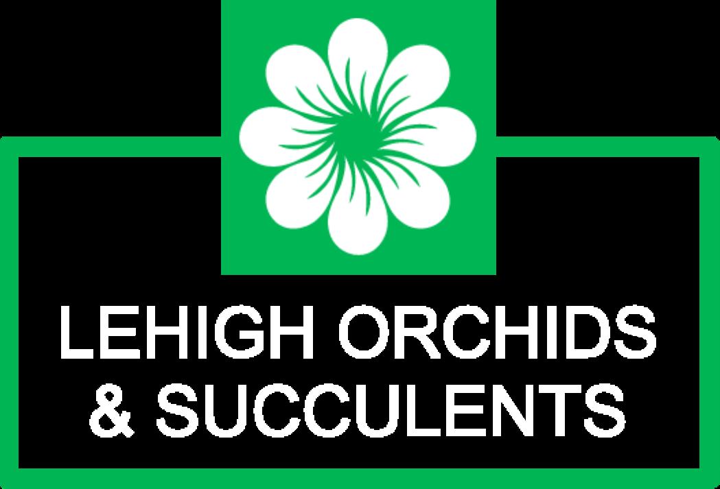 Lehigh Orchids & Succulents